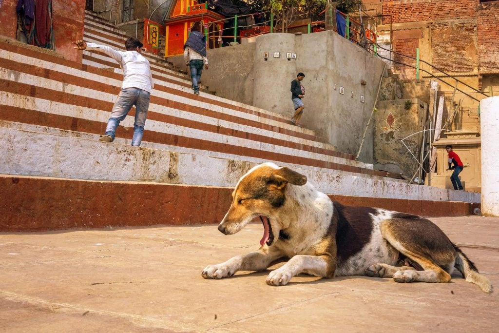 India street photography in Varanasi