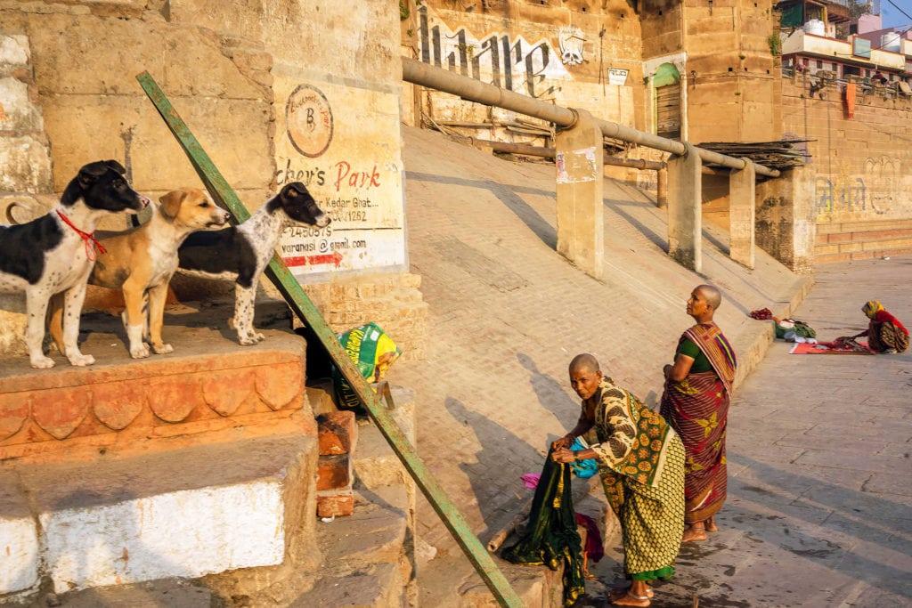 London street photographer Dan Morris in India
